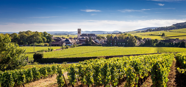 Burgundy Wine Driving Tour - 5 Days - European Driving Holiday
